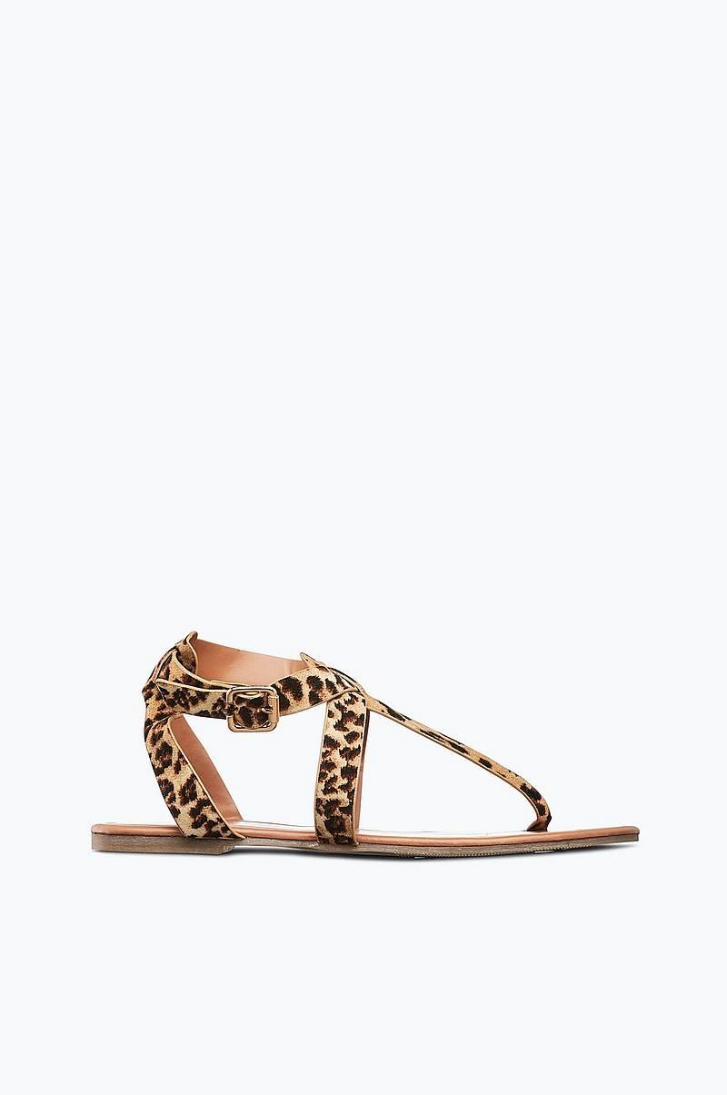 e4b1f1ec9457 Ellos Shoes. Sandal Leo