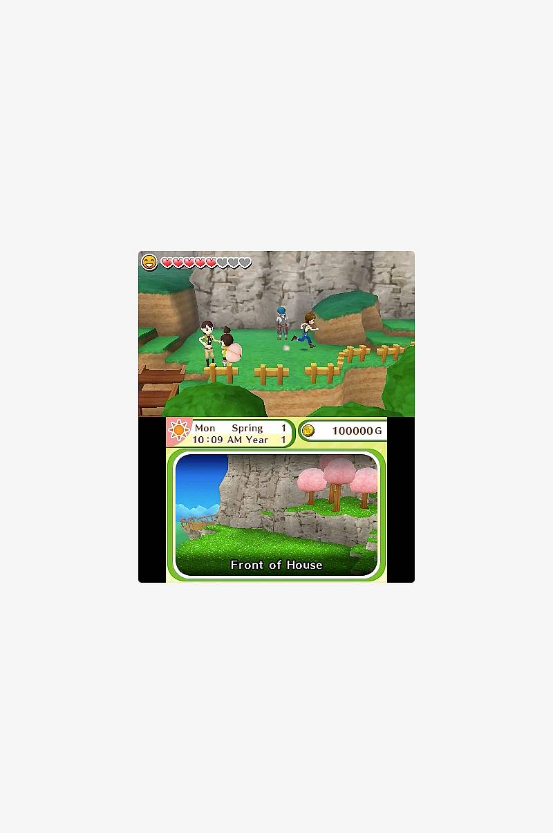Spill Harvest Moon Skytree Village 3DS Nintendo