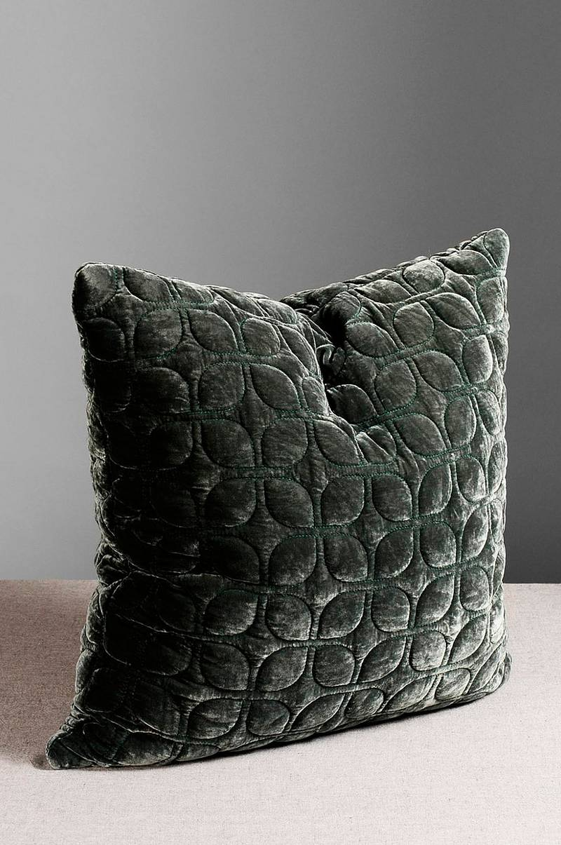 Webster cushion