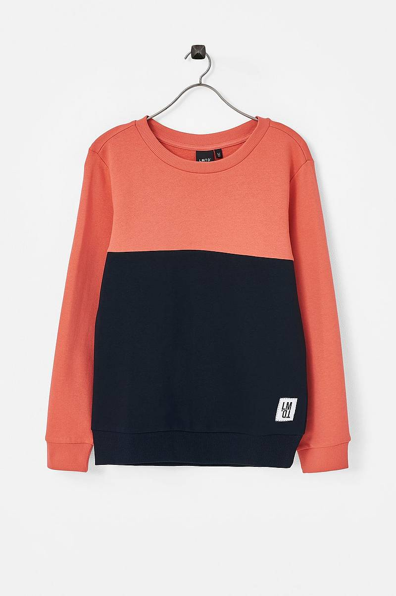 Collegepusero nlmDale LS Sweat