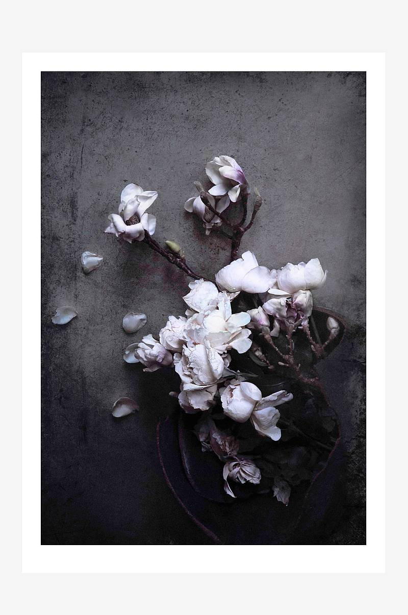 Poster Isolde - Magnolia and roses print 70x100 cm