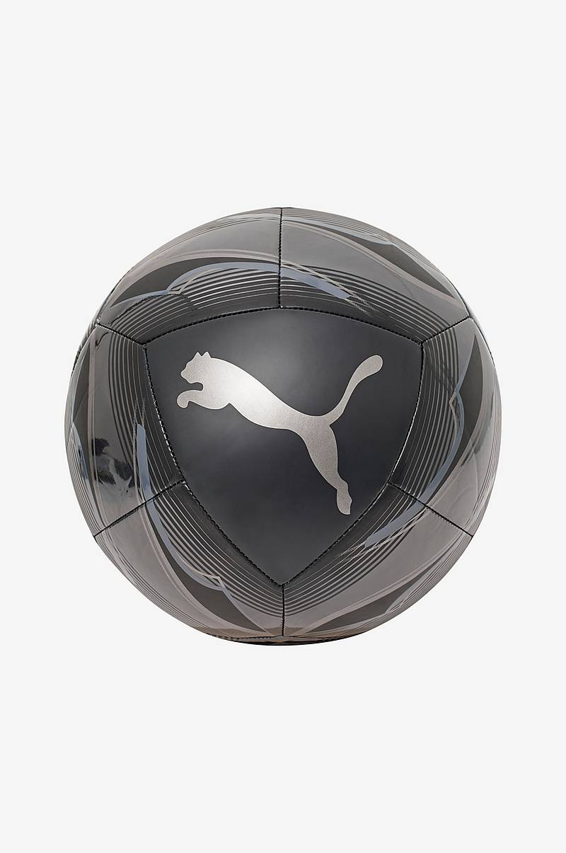 Jalkapallo Puma Icon Ball