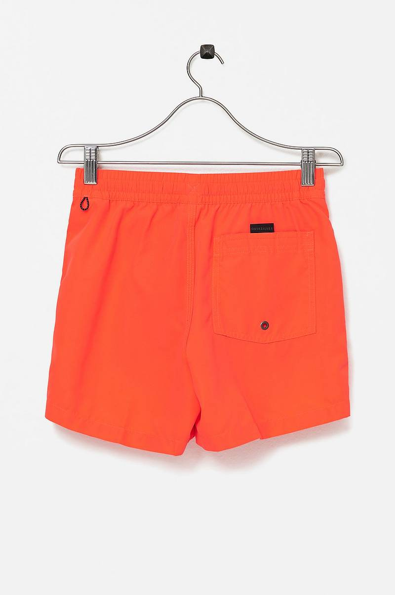 Badshorts Everyday 13 Swim Shorts