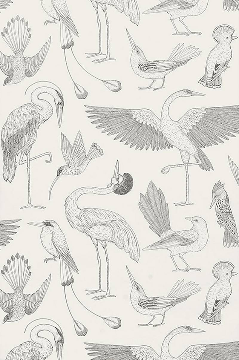 Tapetti Katie Scott Birds