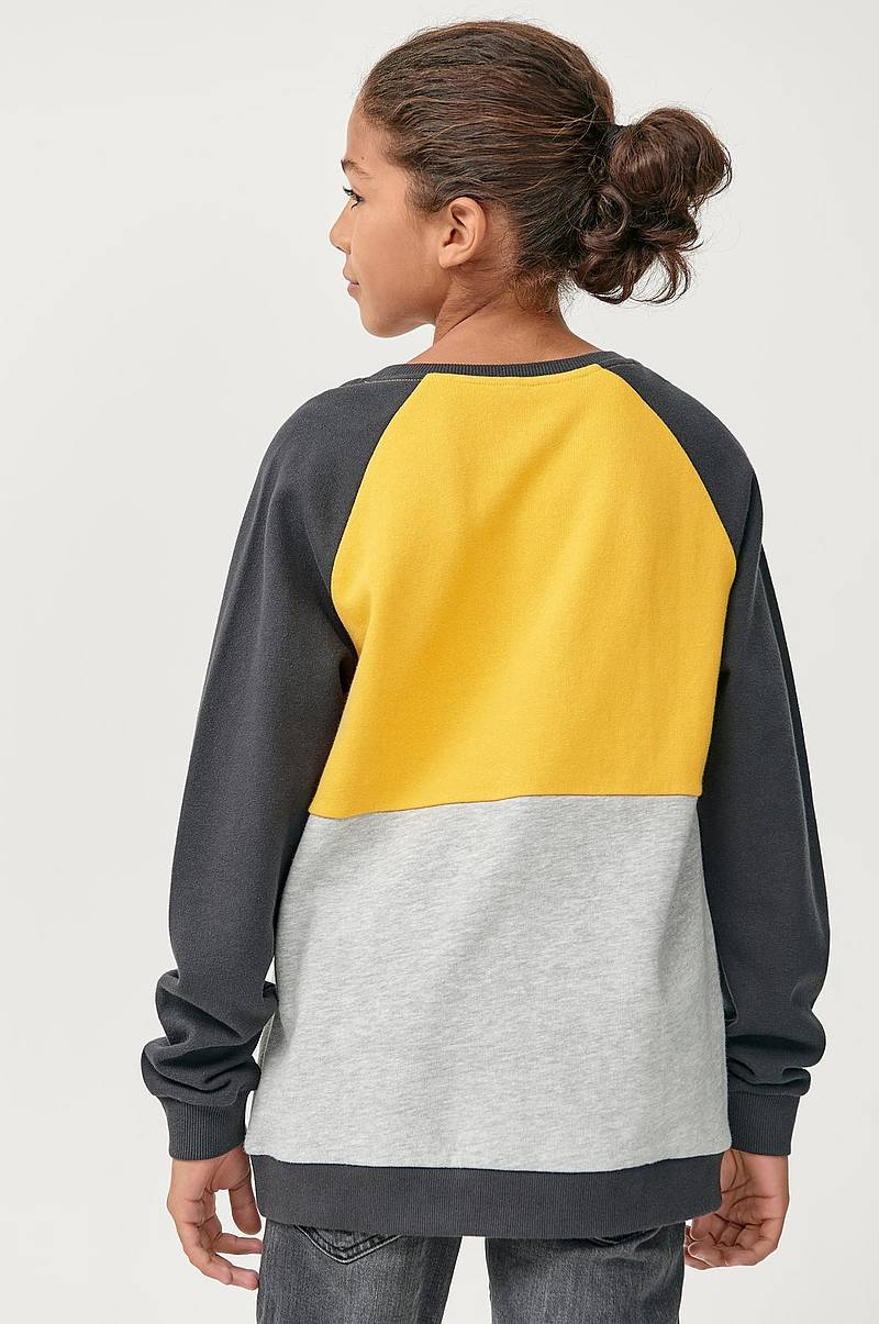 Sweatshirt i blockfärger
