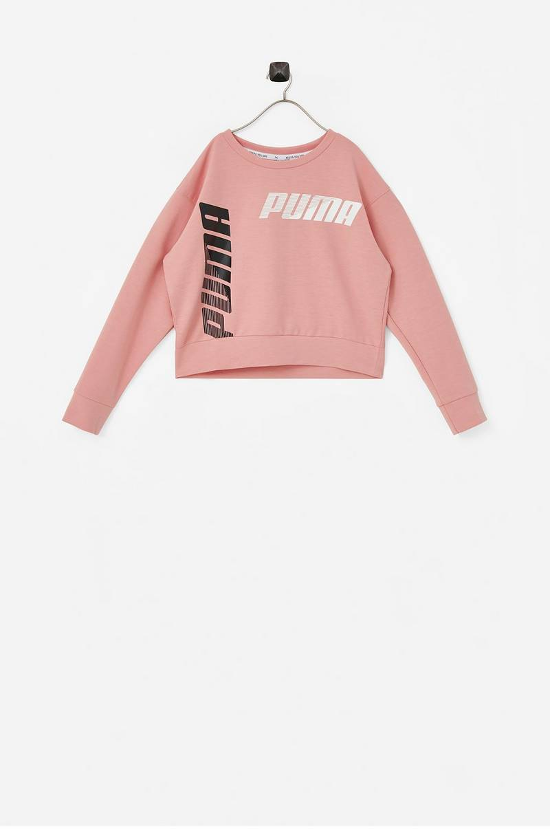 Treenipusero Modern Sports Crew Sweat TR G