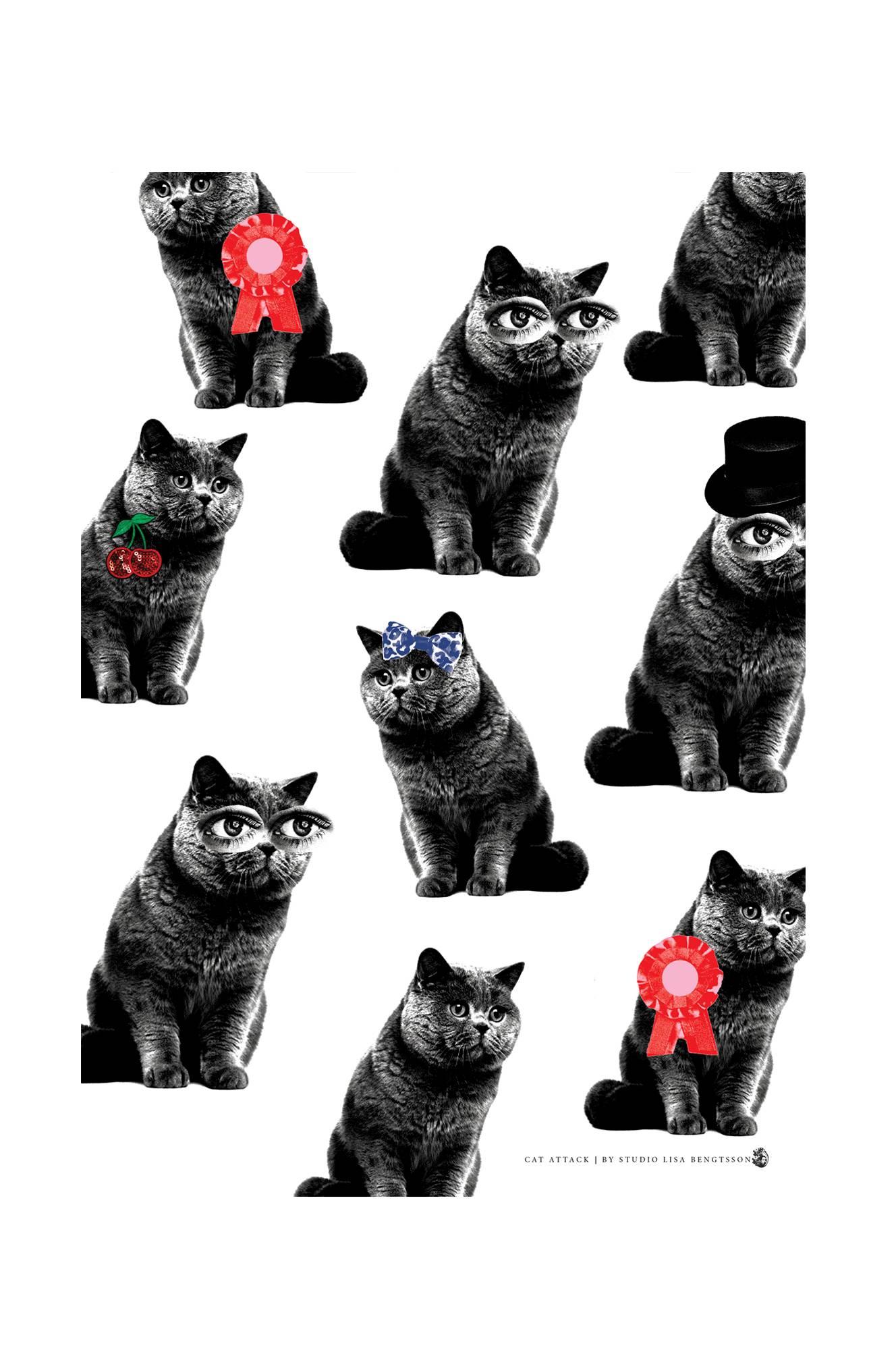 Cat Attack -juliste, A3