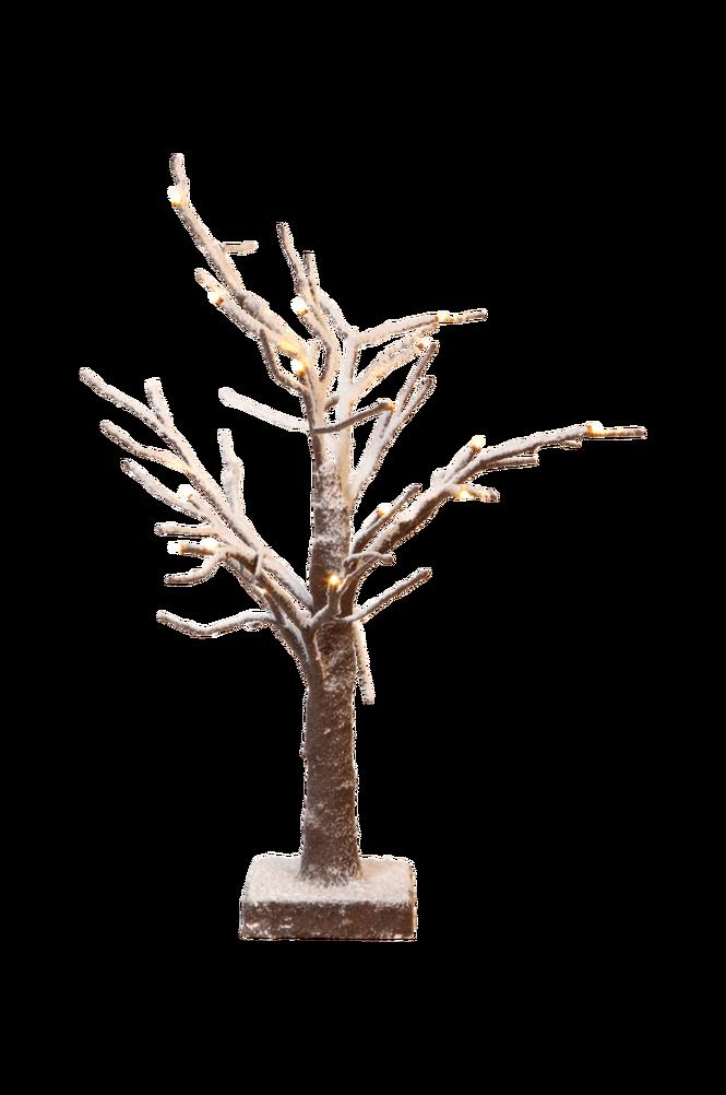 Bordsträd