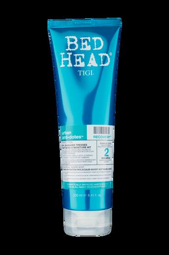 Bed Head Recovery Shampoo 250m