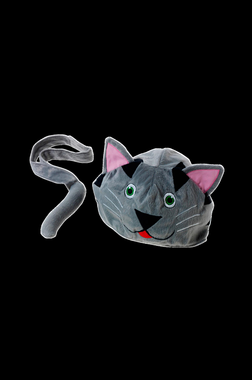 Kissa-asu
