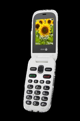 6031 matkapuhelin, harmaa/valkoinen