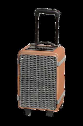 Bluetooth-kaiutin TSP-150
