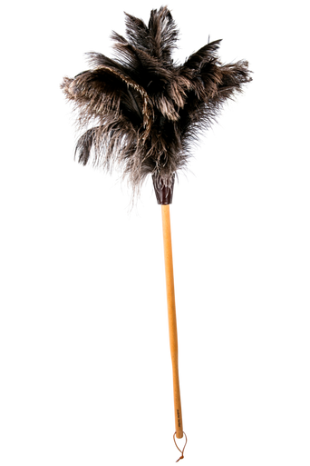 Iso pölyhuisku, jossa viisi sulkakruunua