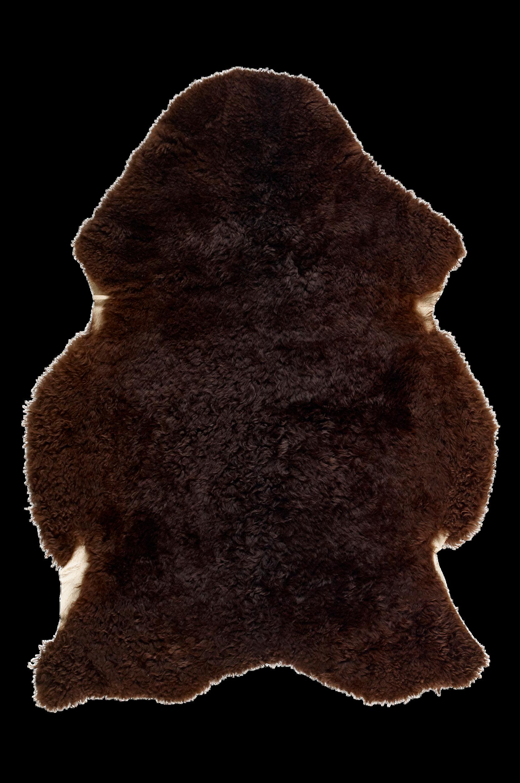 Lampaantalja, leikattu karva