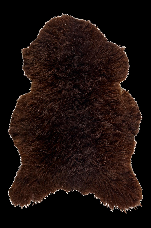 Lampaantalja, pitkä karva