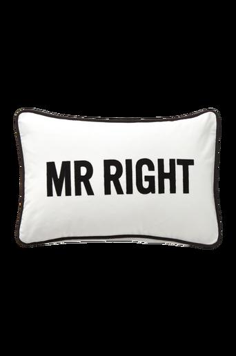Mr Right -tyynynpäällinen