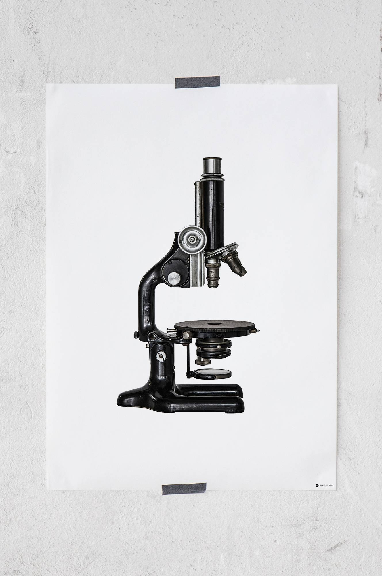 Look Closer Microscope -juliste 50x70 cm