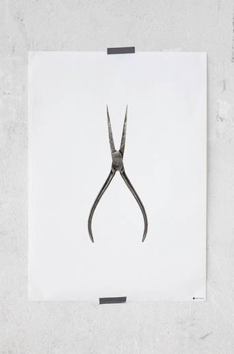 Curious Pliers -juliste 50x70 cm