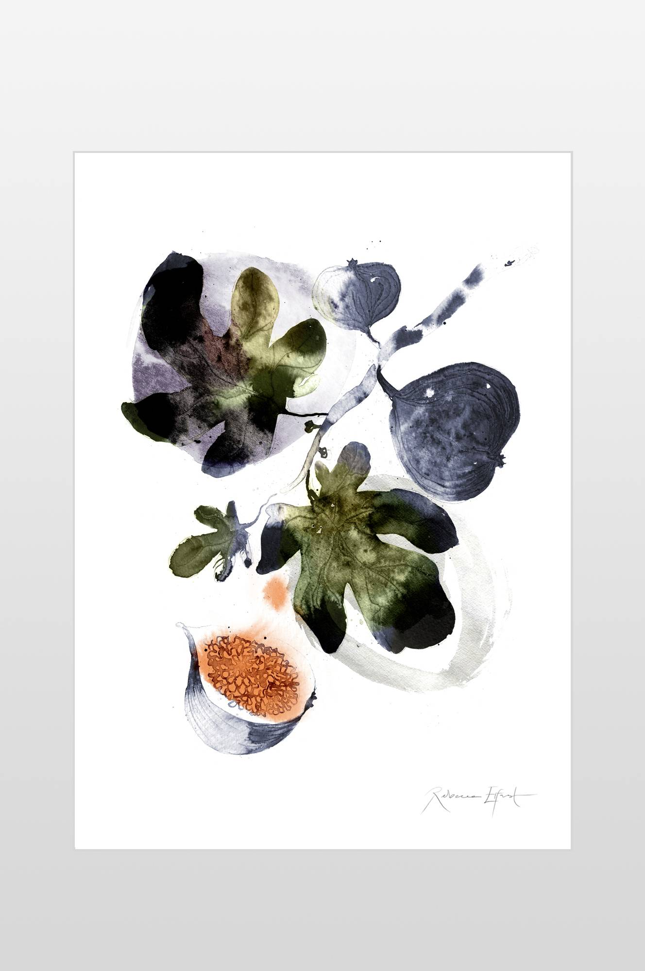 Poster Fikon 50x70 cm Ellos Posters til Boligen i Blå/grøn
