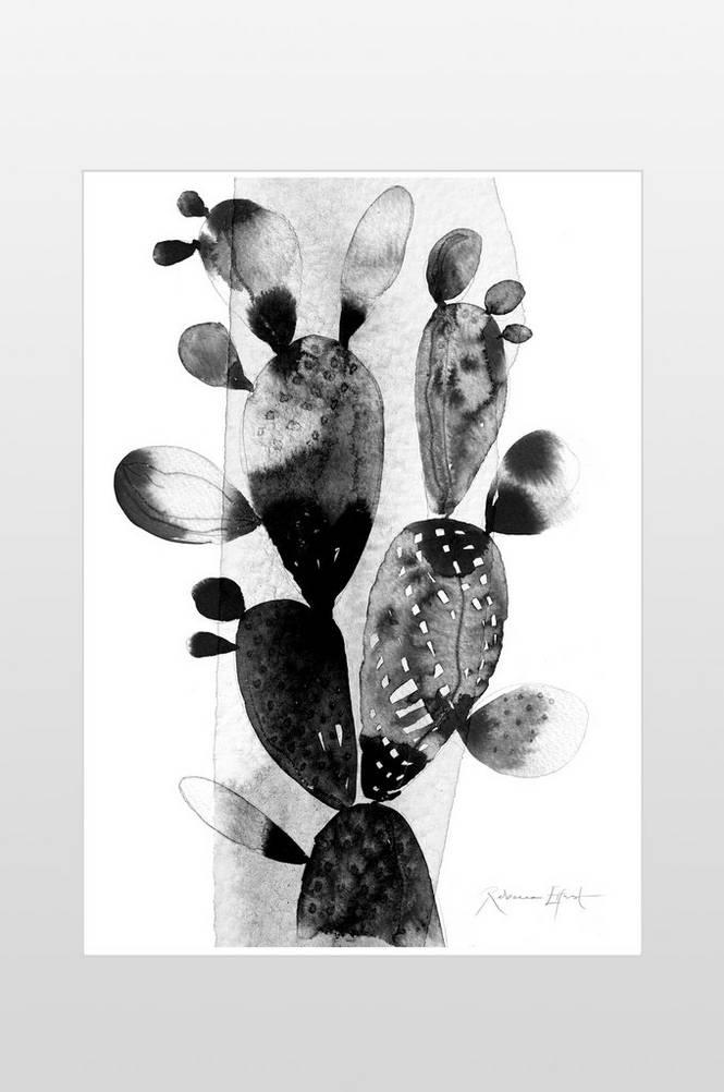 Poster Kaktus 50×70 cm