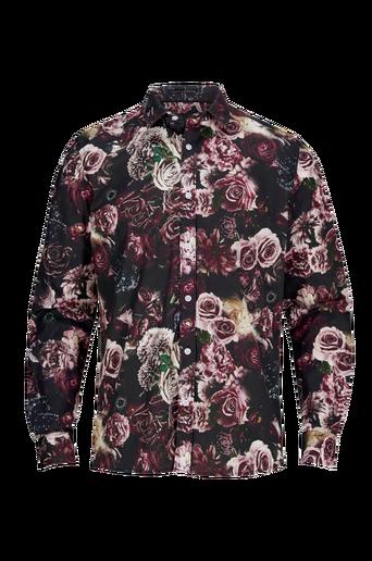 Florid-paita