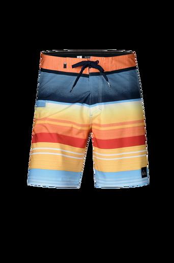 Everyday Stripe Vee Boardshorts -shortsit