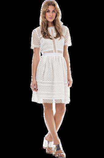 Emily mekko