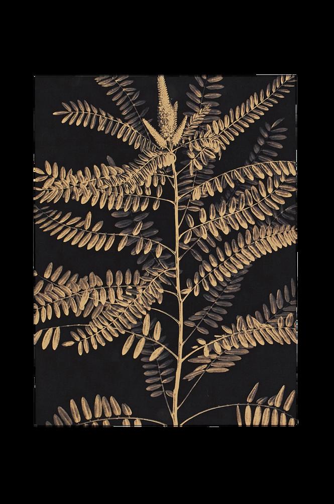 Poster Ormbunke 30×40 cm