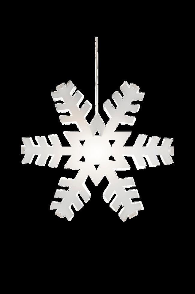 Bilde av Stjerne Nygården, 48 cm