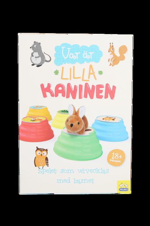 Barnspel Var är Lilla Kanin