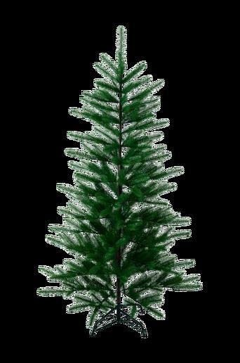 Boden-joulukuusi 180 cm