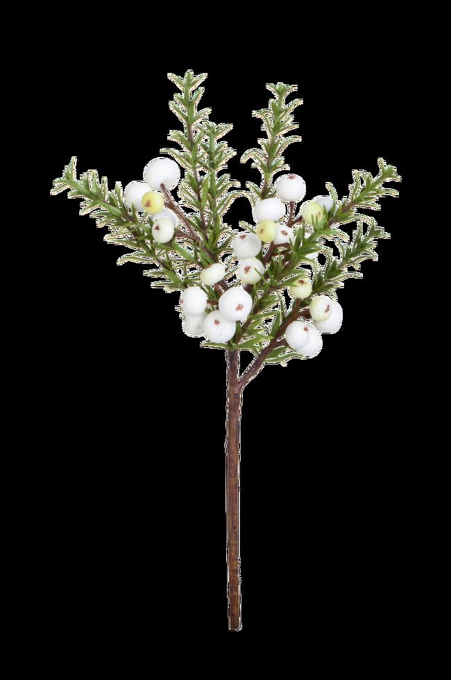 Bilde av Flora snøbær 30 cm
