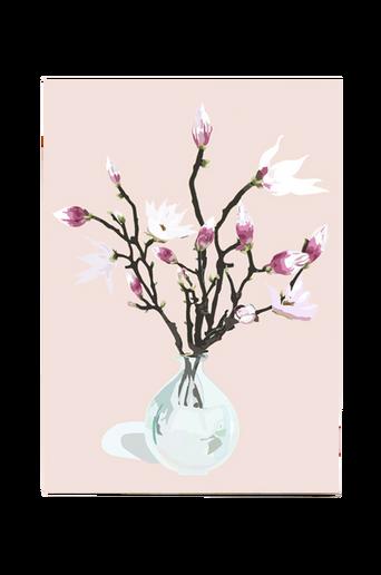 Magnolia Dusty Rose -juliste A3