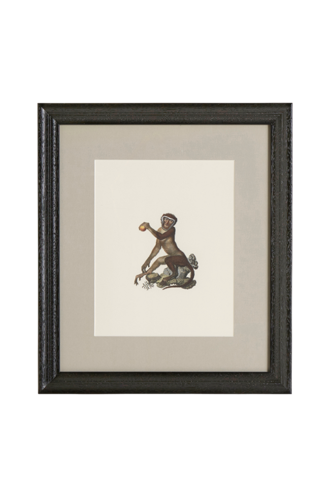 Bilde av Bilde Monkey 2 35x40 cm