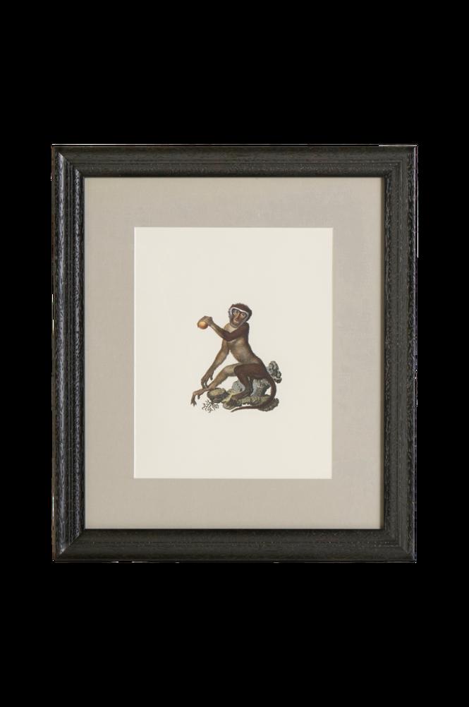 Tavla Monkey 2 35×40 cm