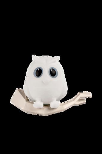 Oscar-pöllö-yövalaisin, valkoinen