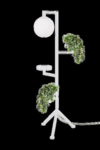 Astoria-lattiavalaisin, valkoinen