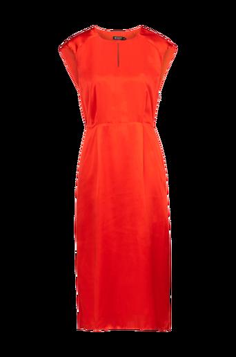 Agave-mekko
