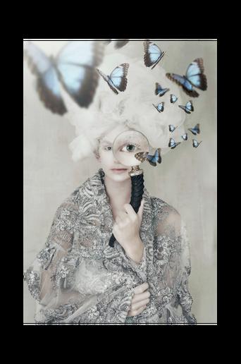 Butterfly Spy -juliste 21x30cm
