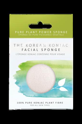 Premium Pure White Sponge
