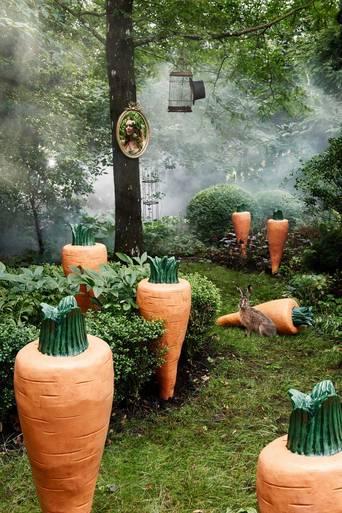Carrie Carrot -porkkana