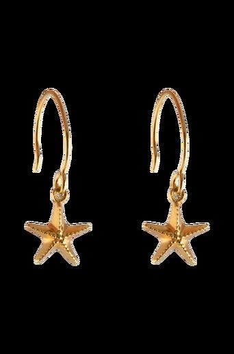 Beaches Earrings Starfish -korvakorut