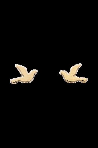 Dove Studs Small korvakorut