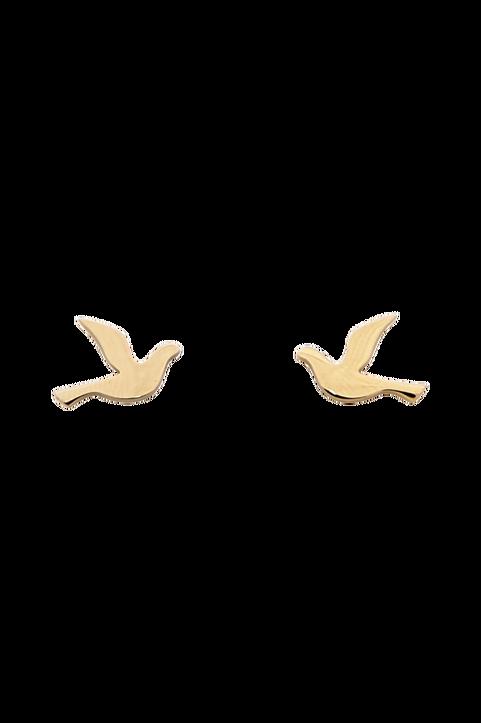 Örhängen Dove Studs Small