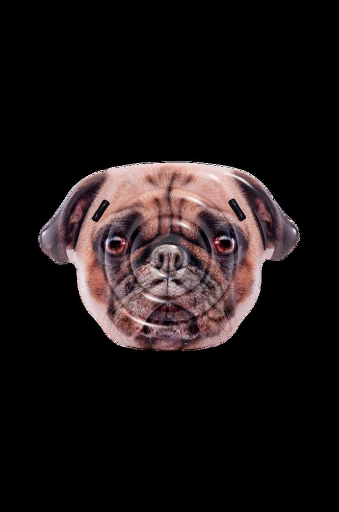 Pug Face Island Real Printing