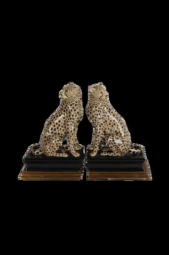 Cheetah kirjatuet