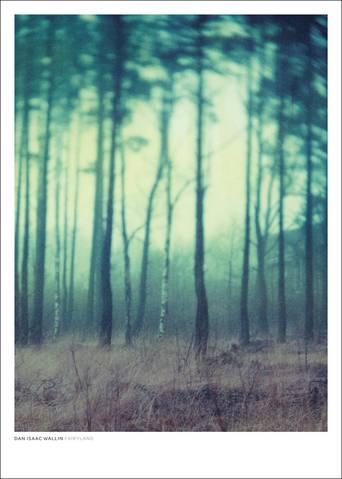 Fairyland juliste 50x70 cm