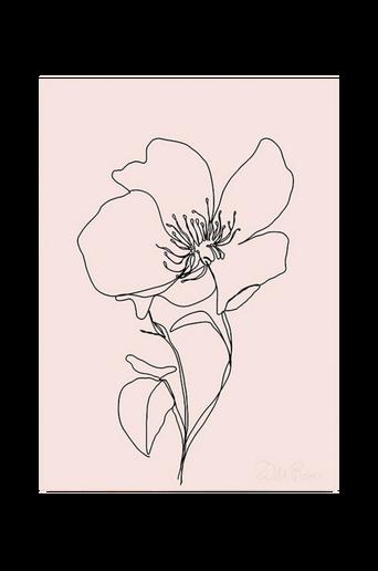 Juliste Wild Rose