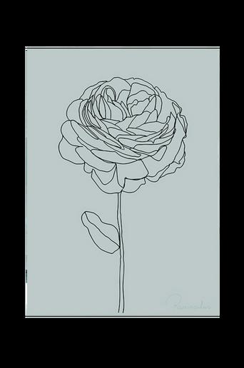 Juliste Ranunculus
