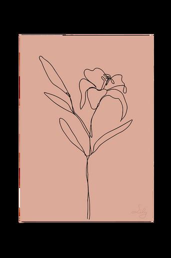 Juliste Lily